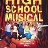 cheetodatbeatmaker-high school musical follow on twitter @spacekid14