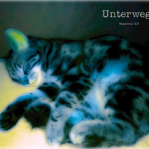 Le rêve de Monsieur Chat