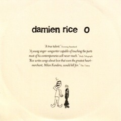 Damien Rice - the blowers daughter (acoustic)