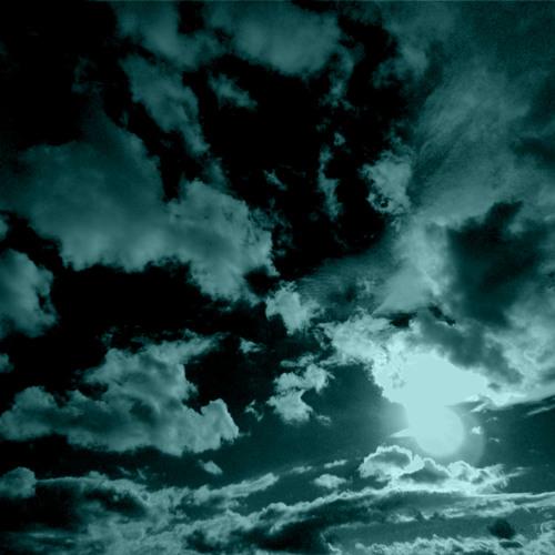 Sonitus Aurium - Lidské zátiší
