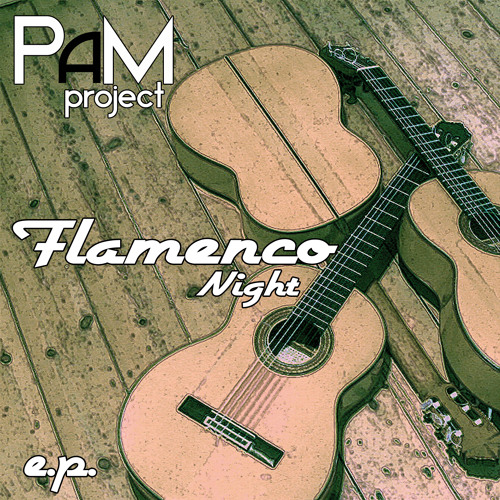 PAMproject_Mahalageasca (2k13 radio mix)