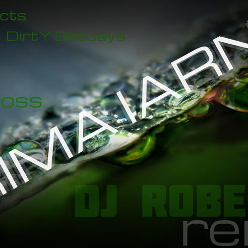 Bpm Projects & DirtY DeeJays feat RAma & Andross - Prima Iarna ( Dj Robert.T Remix )