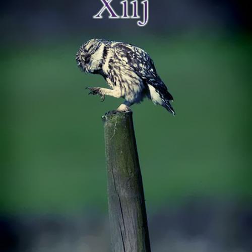 Xiij - Owl 3 [Instrumental Jazz]