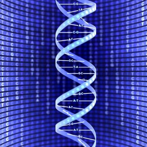Despise - GenomeWide Mix