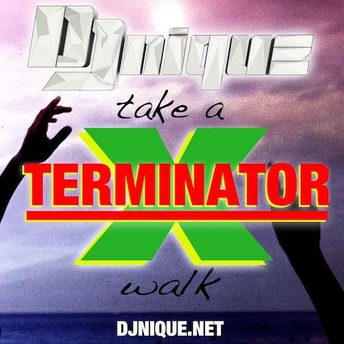 Take A Terminator X Walk - Public Enemy vs. Passion Pit (SniquePeek Mash-Up)