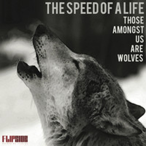 The Speed Of A Life