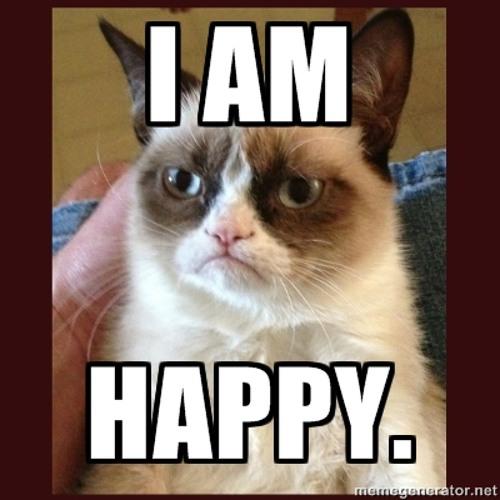 Carmen Noise - Grumpy Cat ( Happy mode Mix )