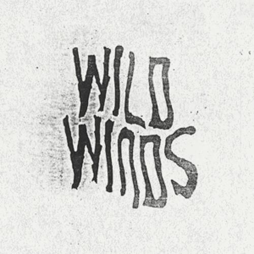WILD WINDS by Erwannlaflute (hommage a Julien) Featuring Meritxell Alarcón