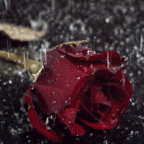 Morteza Azizi - Poem 002