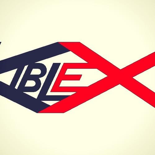 Best Electro & House 2013 - Dj Kiblex