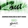 Andreas Rodlund & Matt Hewie - Bird (Exclusive Preview)