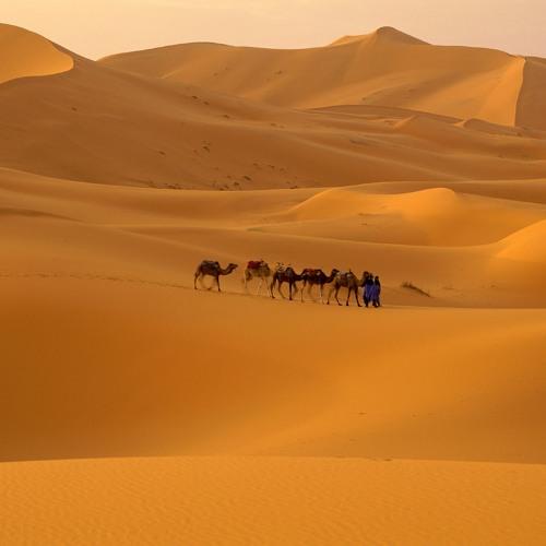 Dreams in dusty sands- 2M3LO