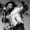 the bob marley the wailers session mix dj general fx