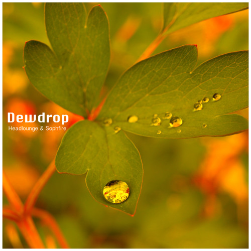 Dewdrop (dub edit)