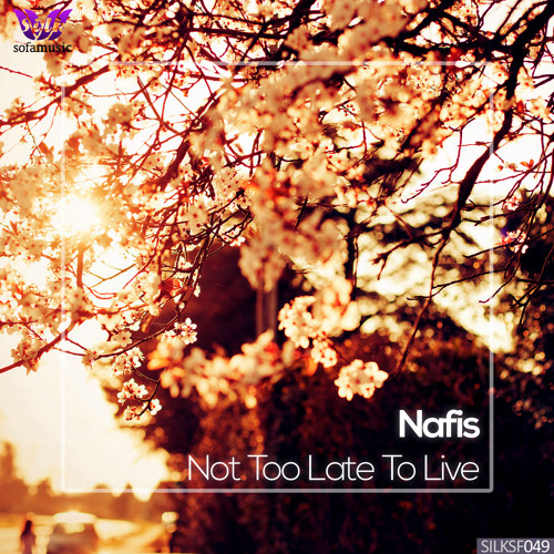 Nafis - Beautiful Mind (preview) (Silk Sofa)