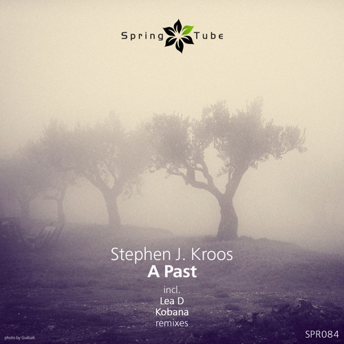 Stephen J. Kroos - A Past (Kobana 'Acid' Dub' Mix) preview