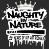 Naughty By Nature - Hip Hop Hooray (DJ Scene 2013 Remix)