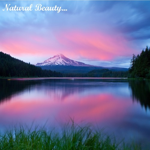 Natural Beauty ['Buy' is a free download!]