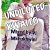 Undiluted Kwaito mixed by Dj Mkhukhwini 1