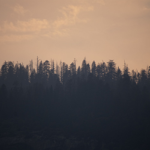 RusaMilitan - Senandung Senja