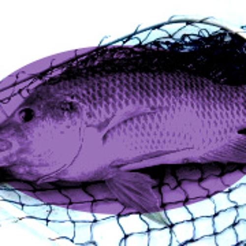 Whtw - FISHNETS
