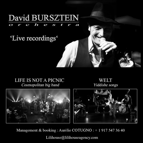 Life is not a picnic - David BURSZTEIN Orchestra - Live recording 2013