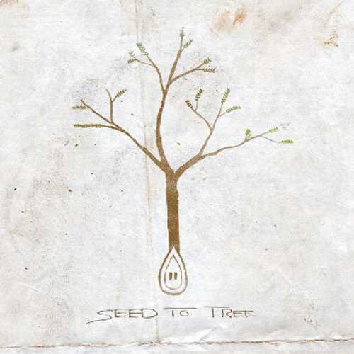 Broken down (Single) - Seed to Tree