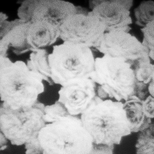 Crystal Castles - Plague (Dead Fe†us Remix)