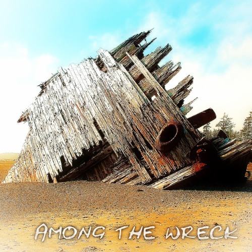 First steps- By Among the Wreck