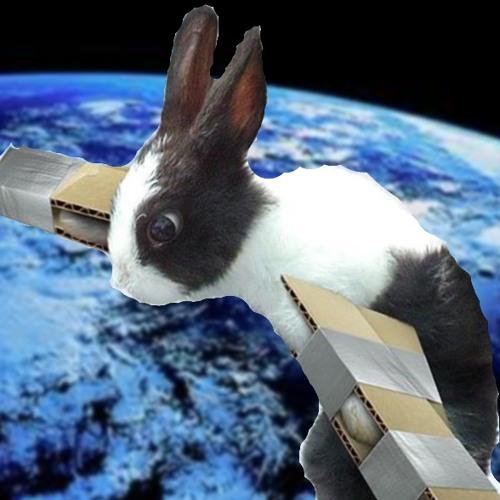 """Rabbit In Space"""