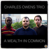 Valse Hot - Charles Owens Trio - A Wealth In Common