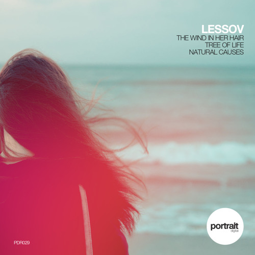Lessov - The Wind In Her Hair (Original Mix)