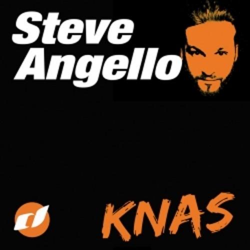 Steve Angello - Knas (House Case Bootleg 2013)