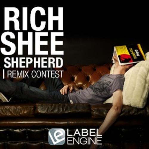 Lazy Rich and Hirshee-Damage Control (Ashton Robbins Remix)
