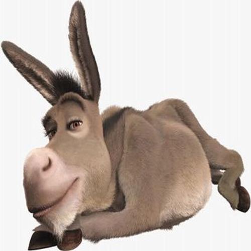 Donkey Moves for Flute