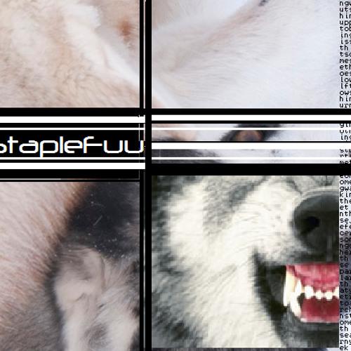StapleFuu - Friendly Reminder