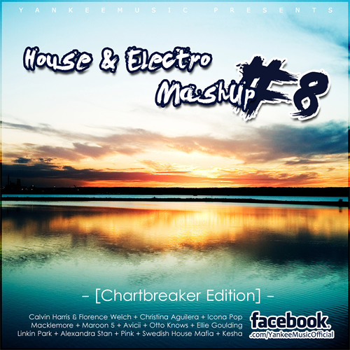 Yankee's House & Electro Party MashUp #8 [Chartbreaker Edition] - 2013