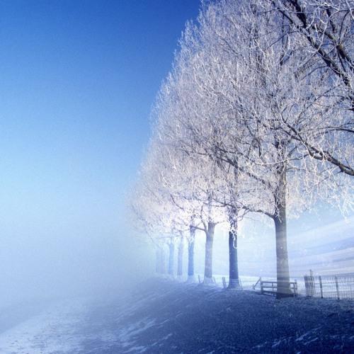 Winter Movements ²⁰¹³ - Sven Blume