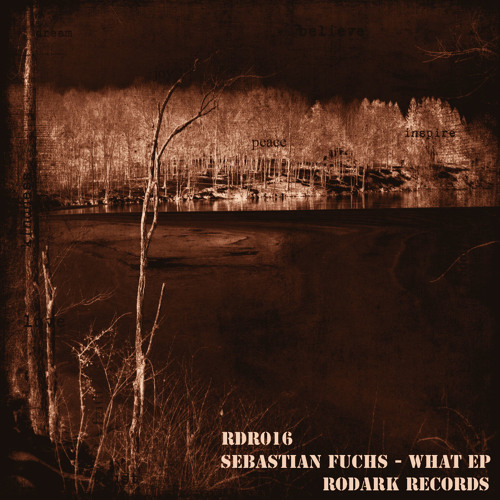 Sebastian Fuchs - Say What (Dark Pulse Remix) OUT ON Rodark Records !!!