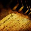 Original Karaoke - Toata iubirea ta (Carmen Radulescu)