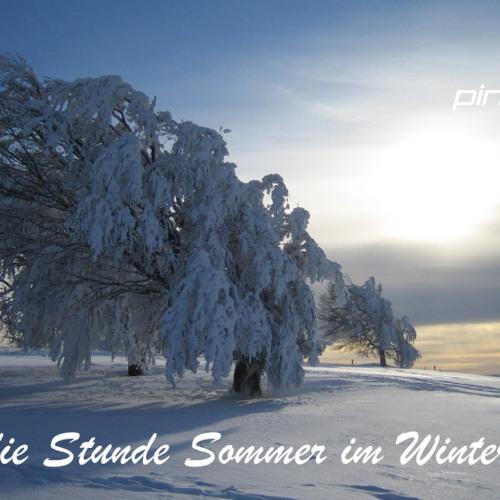PINGPONG und die Stunde Sommer im Winter