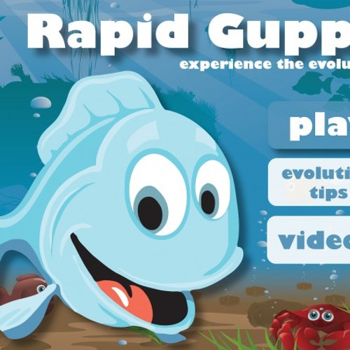 Rapid Guppy - minor Theme