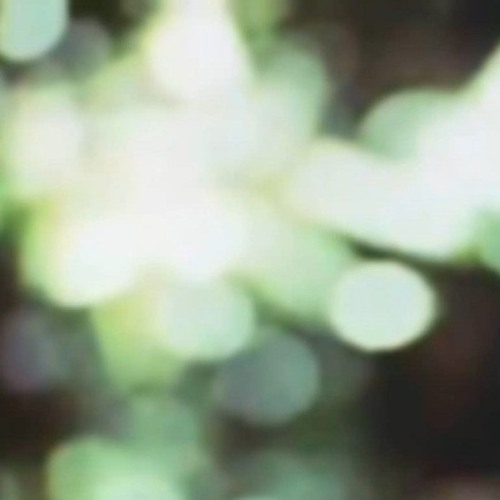 DREAM KOALA - WE CAN'T BE FRIENDS (NOO-BAP BRICOLAGE)