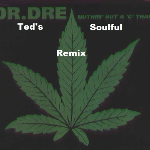 Dr. Dre-Nuthin' But A G Thang (Ted's Soulful Remix)