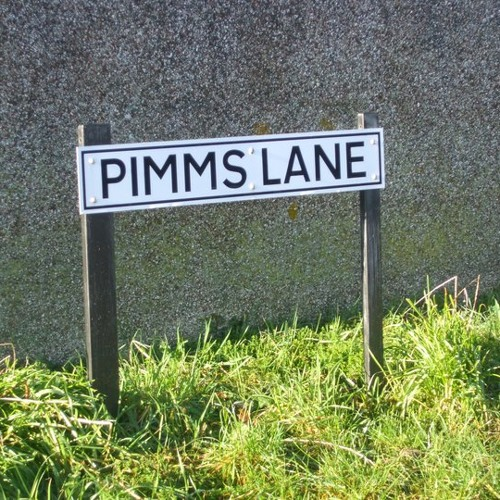 Pimms Lane (I hope you know) (DEMO VERSION) - The Void
