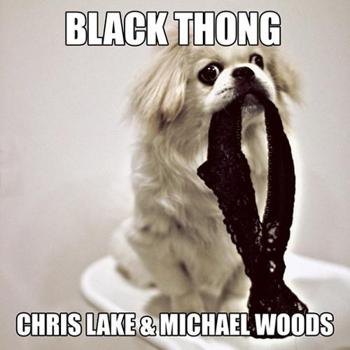 Michael Woods & Chris Lake vs Britney & Will I Am - Scream and shout black thong (Jackflash Bootleg)