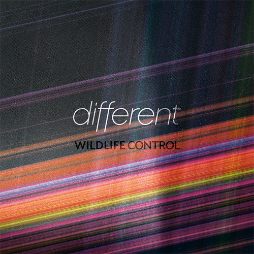 Wildlife Control - Different