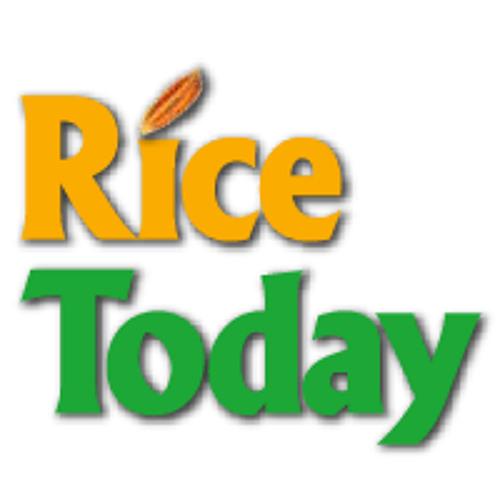 Rice Today | Rizal Herrera