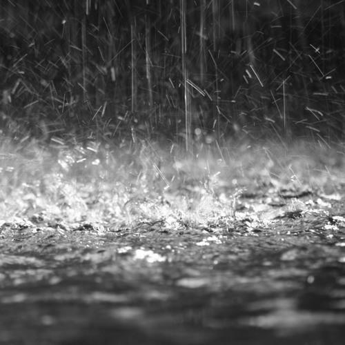 Project Sunrise - Rainsteppin'