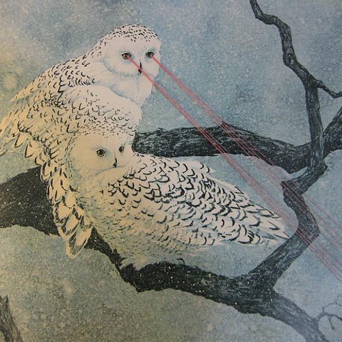 Laser Owls